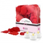 Lovers Premium - Bed of Roses - Red